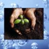 Анализ почвы и воды в современном испытательном центре