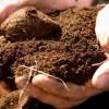 Гранулометрический (механический) состав грунтов и почв