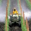 Определение пестицидов в почве