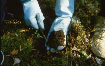 Методика исследования почвы