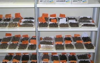 Подготовка проб почвы
