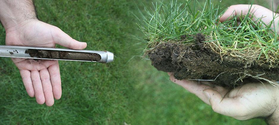 Сделать химический анализ почвы