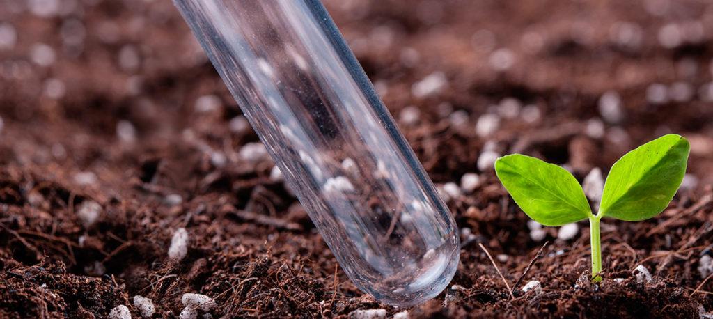Химический анализ почвы в Москве